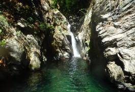 Canyon Du Ruisseau'albès Dans Le Caroux