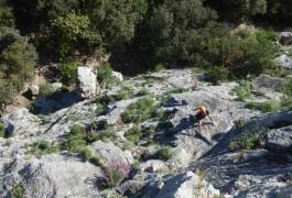 Activités De Pleine Nature Dans L'Hérault à Montpellier, Avec Des Moniteurs D'escalade, Dans L'Hérault Et Le Gard.