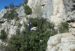 Tyrolienne De La Via-ferrata Du Thaurac En Languedoc-Roussillon Près De Montpellier Dans L'Hérault Et Le Gard, Avec Les Moniteurs D'entre2nature